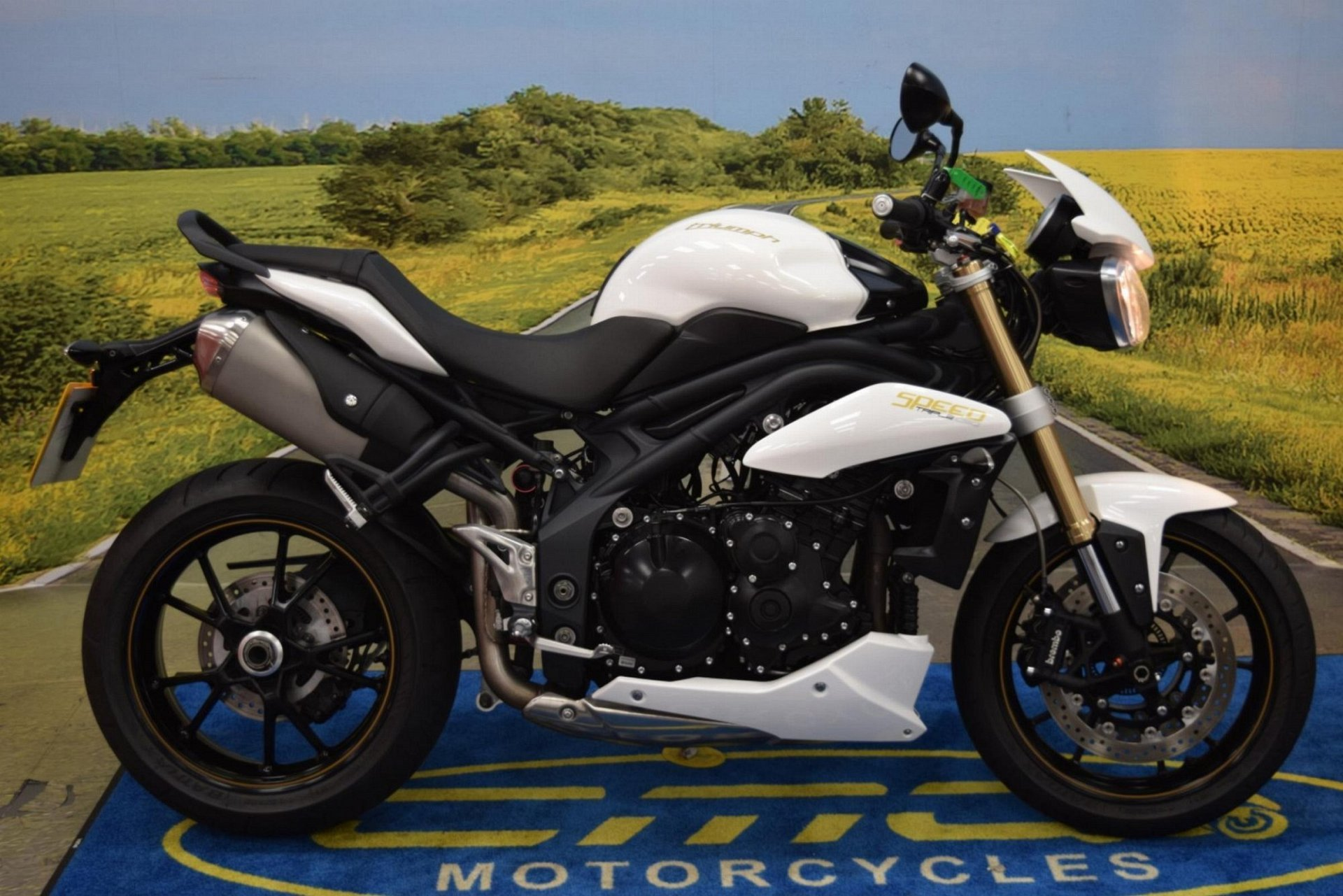 2013 Triumph Speed Triple 1050 for sale in Staffordshire