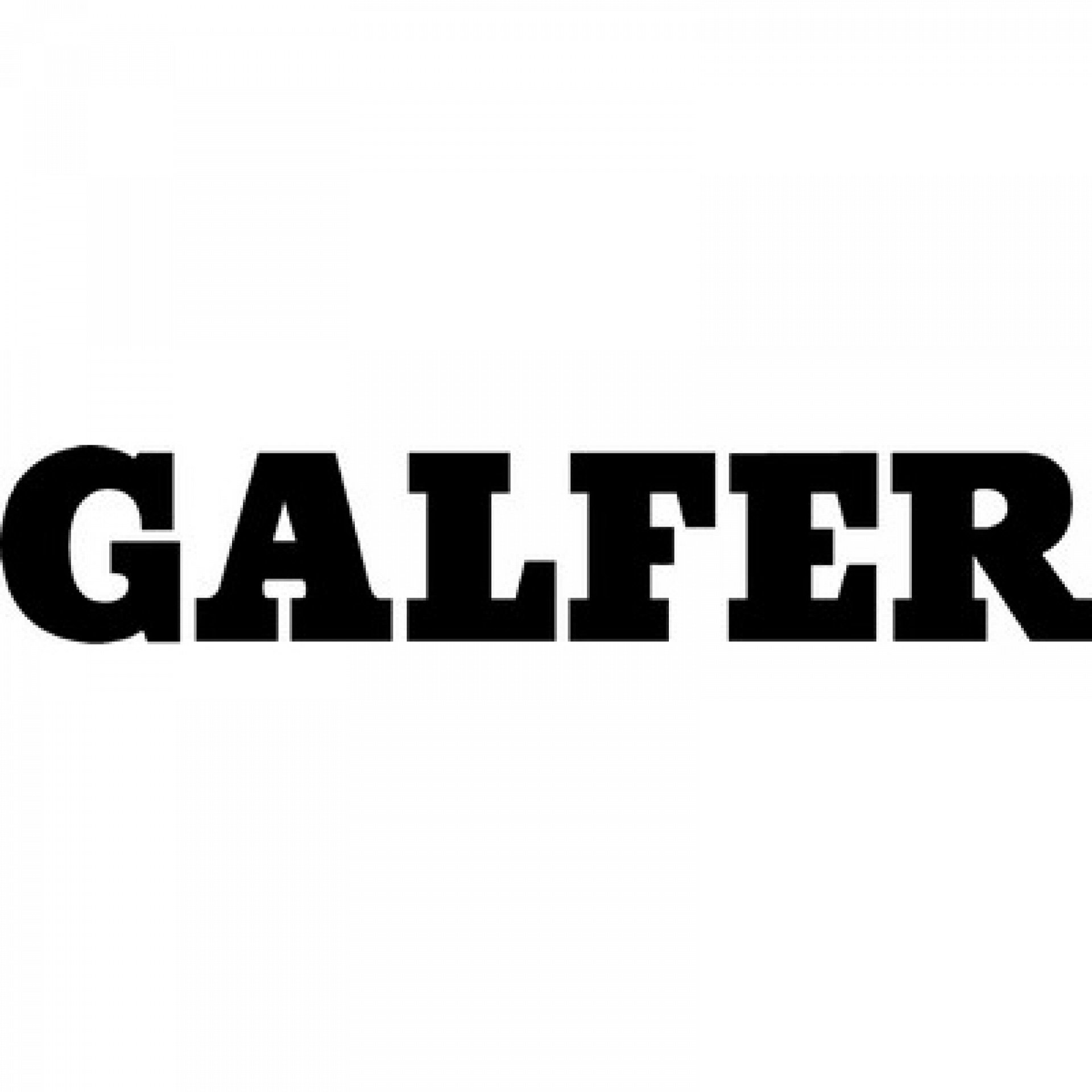 Galfer Dealer